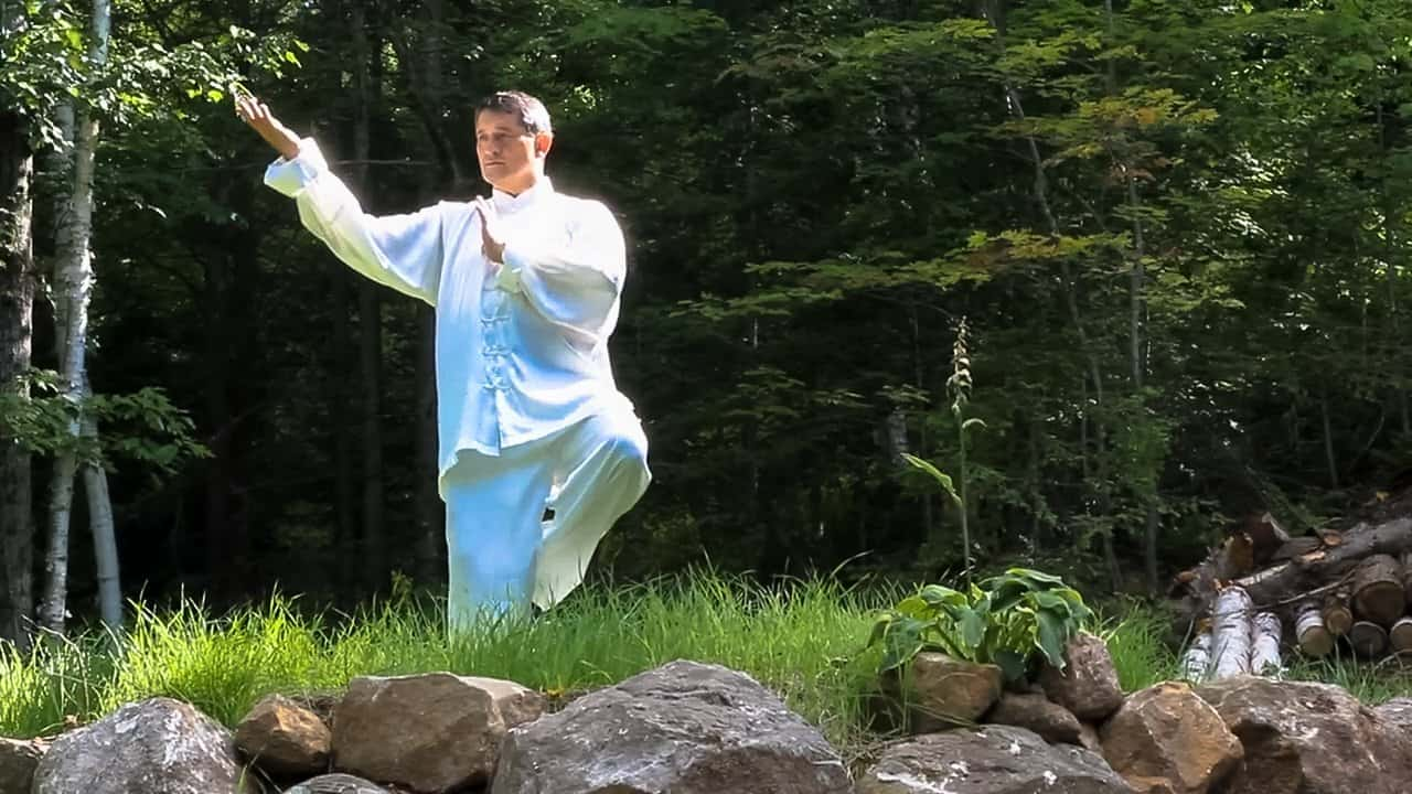 Sergio Arione performing Qigong (Chi Kung) outdoors